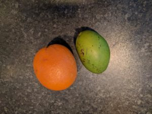 Mini Mango with its' friend the Orange